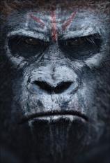 apes1